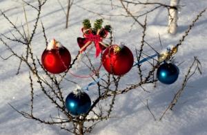 Christmas ornaments on bush